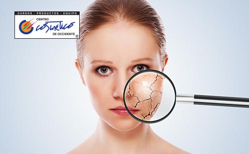 Cuál es la diferencia entre una piel seca y una piel deshidratada?